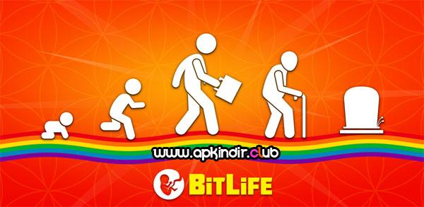BitLife Life Simulator APK indir