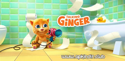 Talking Ginger APK indir