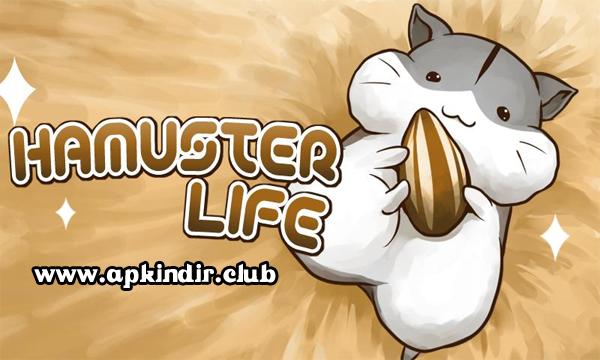 Hamster Life APK indir
